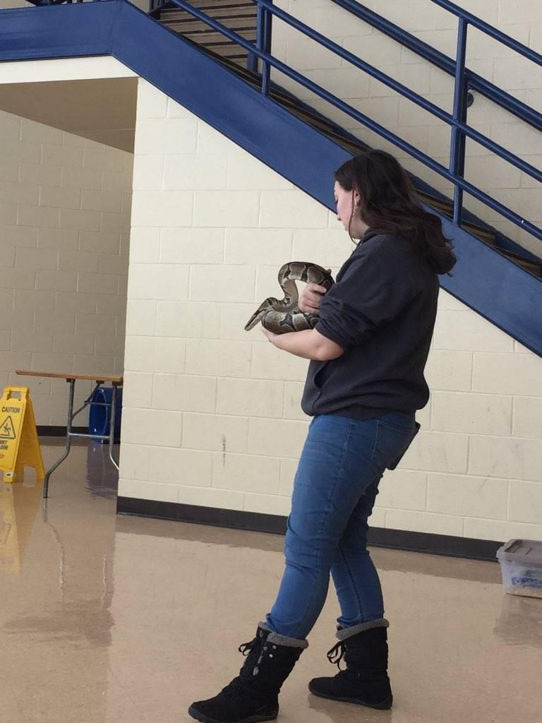 Utica Zoo mobile -snake